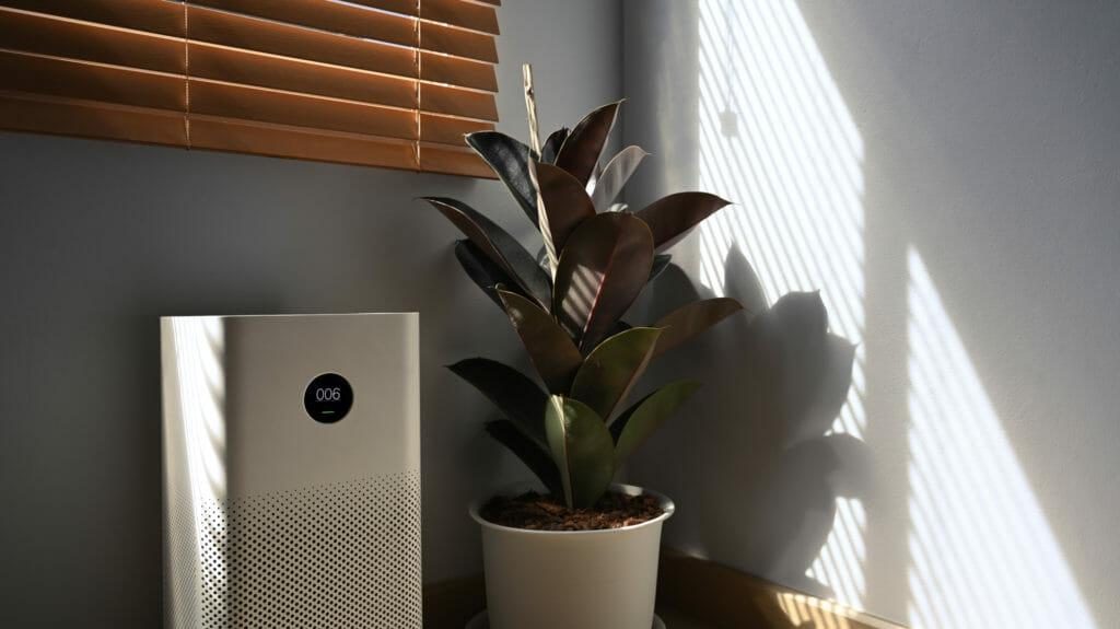 Render eine mobilen Split-Klimageraets in Raum neben Pflanze